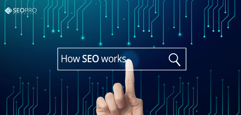 Beginner's Guide to SEO_This is How SEO Works